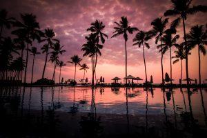 pexels-photo-60217